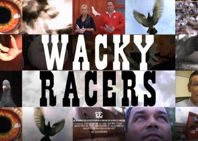Wacky Racers Landscape Banner FINAL